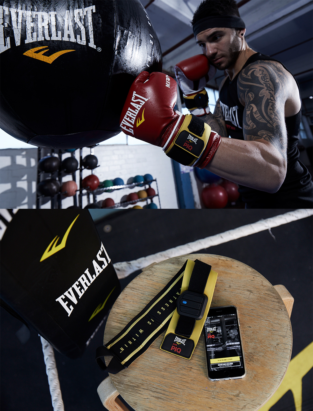 Everlast x PIQ by Designworks Clothing Company in Melbourne VIC